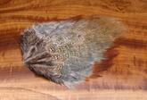 Pheasant Rump Hackle