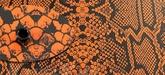 Kydex Snake Orange Rattler 2,0 mm