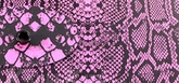 Kydex Snake Pink Rattler 2,0 mm